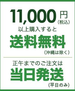 11,000円以上送料無料